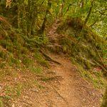 Eisleck trail etappe 5 – Houffalize – La Roche-en-Ardenne